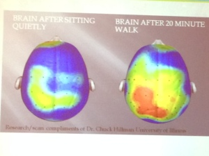 BrainImage.Walking